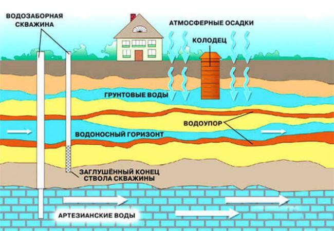 Инженерная геология. Гидрологические и гидробиологические изыскания